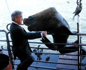 Piñera y el lobo marino